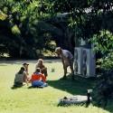 26 Steve Irwin, Australia Zoo