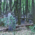 The old Jewish cemetery, Warsaw, Poland