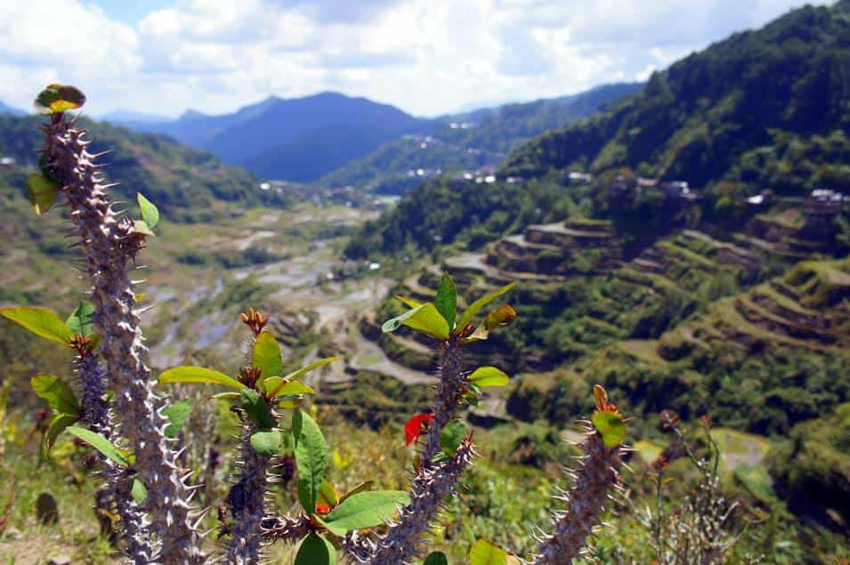 Reasons to visit Banaue