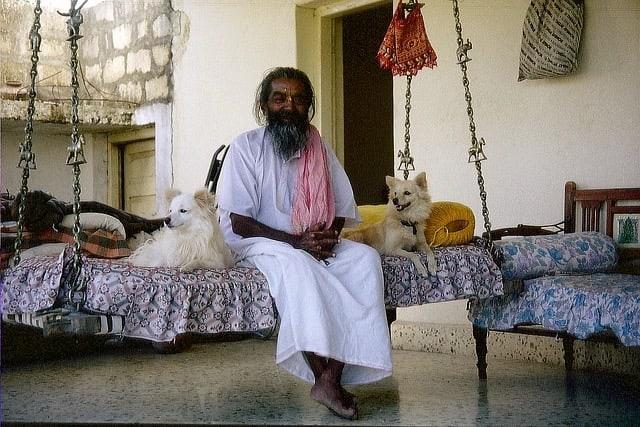 guru-og-hund-2
