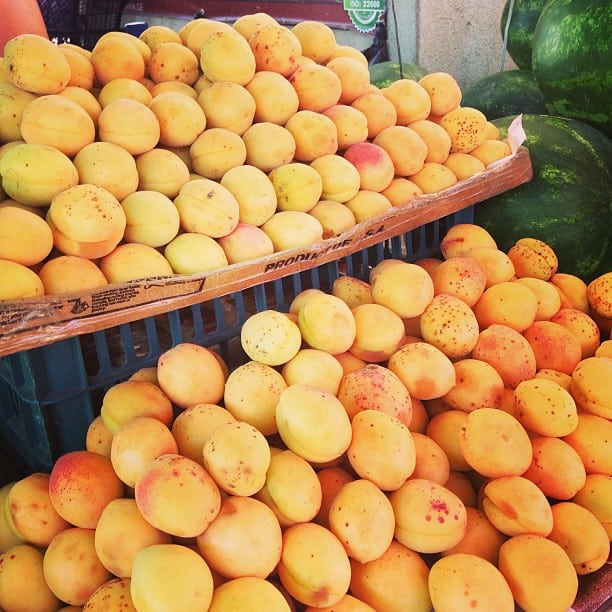 1-aprikos