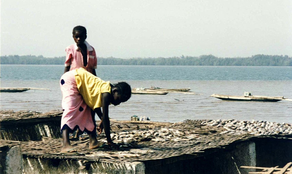Girls drying Fish, Diouloulou River in Casamance, Senegal