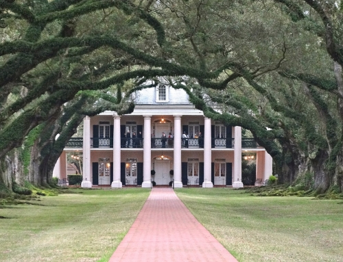 Oak Alley, a classic Southern Antebellum Plantation (Day out New Orleans)