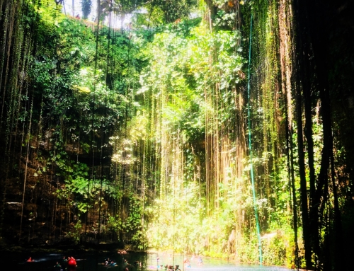 Cenotes: the bewitching underground world of the Mayas