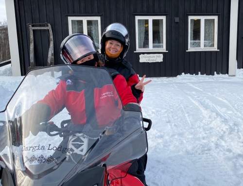 Snowmobiling in the Arctic